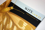 Witsgold integrated annual report 2012